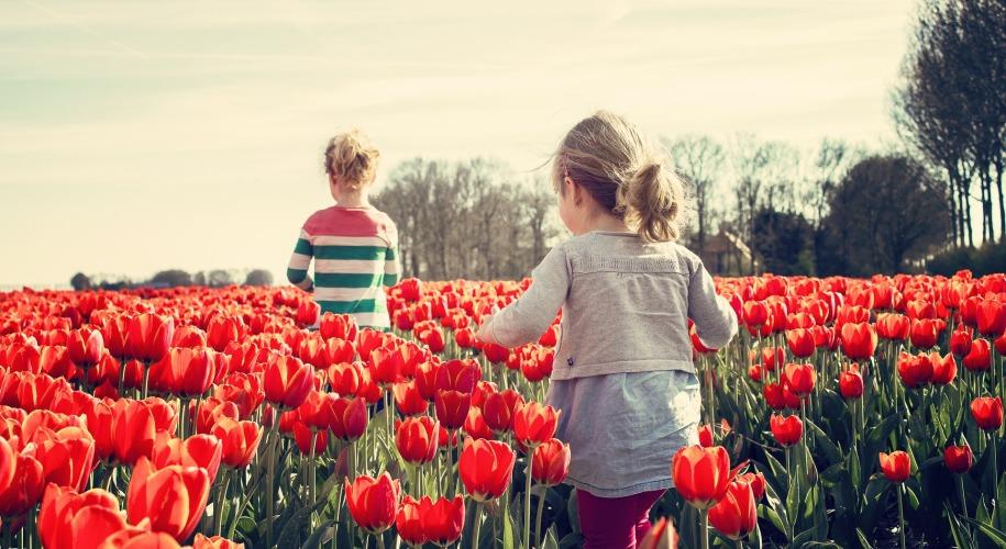 мотивация, дети, родители, самоопределение, самосознание, мировоззрение